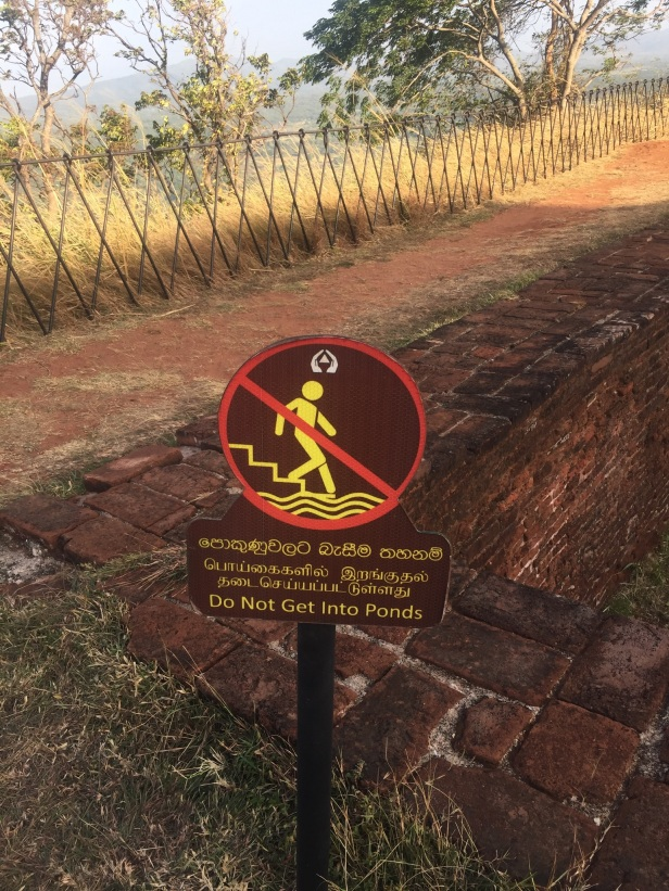Sigiriya - No Swimming Sign