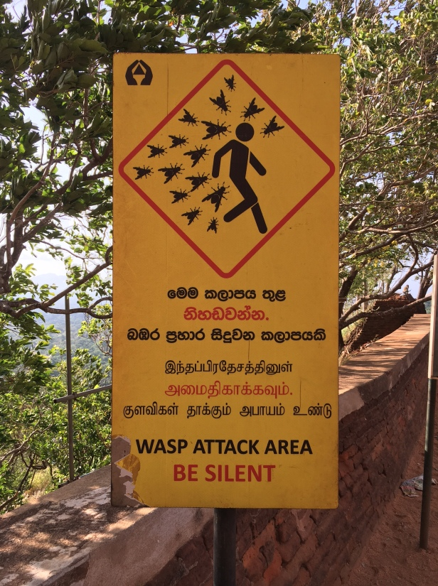 Sigiriya Wasp Attack Sign